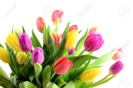 0 tulips for you