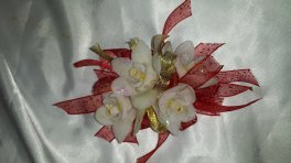 A corsage cym orchid wrist corsage, red bling