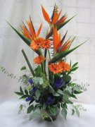 A Birds of Paradise & Gerberas