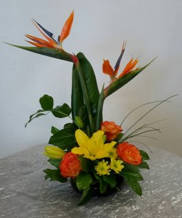 A Bird of Paradise, roses, lilies delight