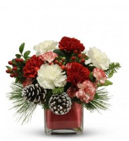 flowers in a cube, Festive Red White Christmas flower carnations
