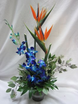 1 Pair Of Birds with Blue Orchids