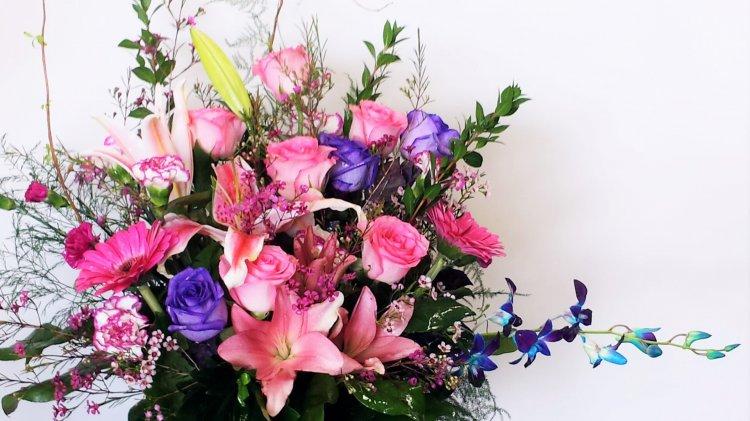 1 cut flowers pinks assorted 1 cut flowers pinks assorted pink 1 cut flowers pinks assorted click to enlarge mightylinksfo