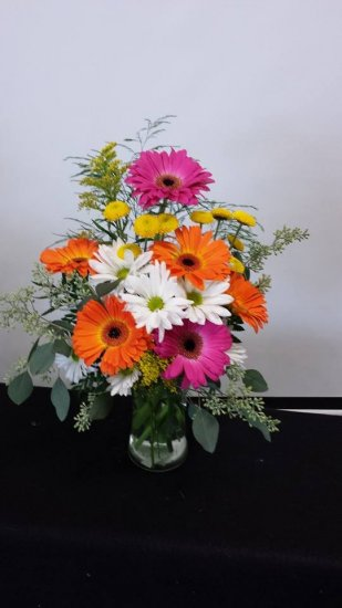 1 1 a gerbera delight - Click Image to Close