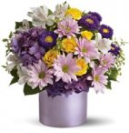 1 1 a Breath of Fresh Air Arrangement/ LAVENDER