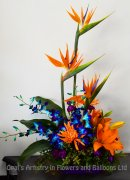 1 Beautiful Tropical Birds of Paradise, blue Orchids