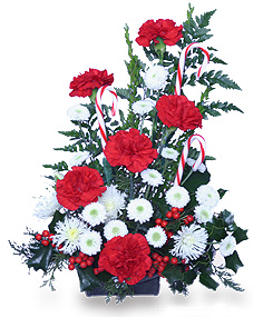 A CANDY CANE FLOWER ARRANGEMENT frontal